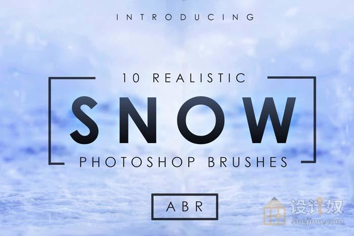 10个逼真的雪花photoshop笔刷透明素材,雪花笔刷,PS笔刷